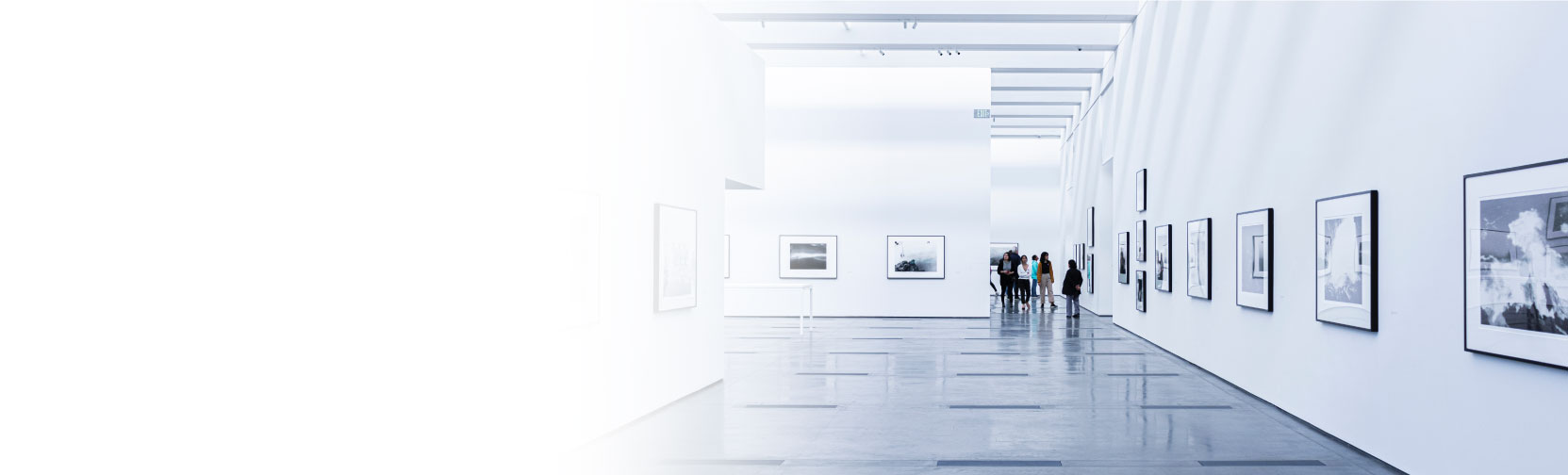 Fine Art Services for Galleries